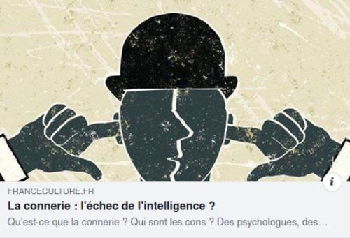 La connerie : l'échec de l'intelligence? (podcast)